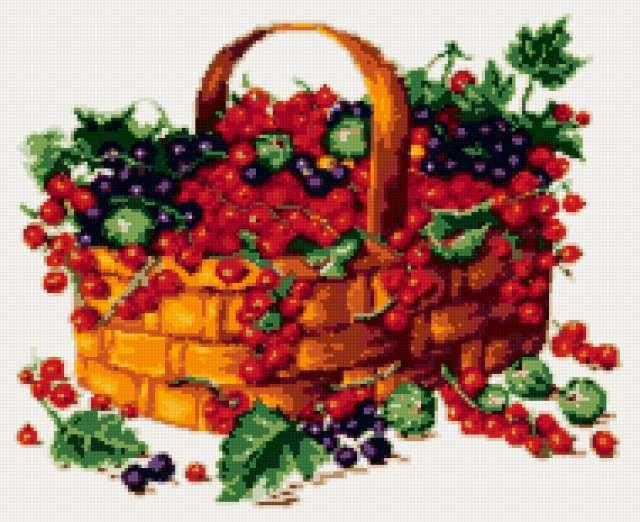 Корзина смородины, корзина