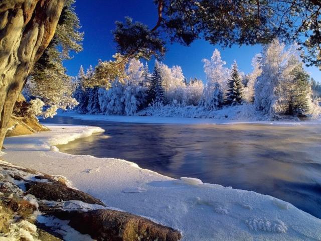 Зимнее утро, зима