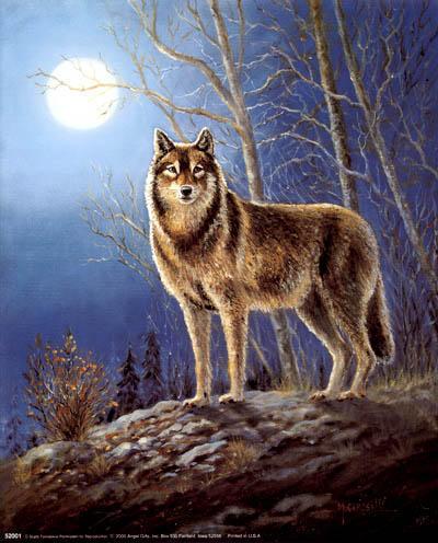 Волк и луна, оригинал