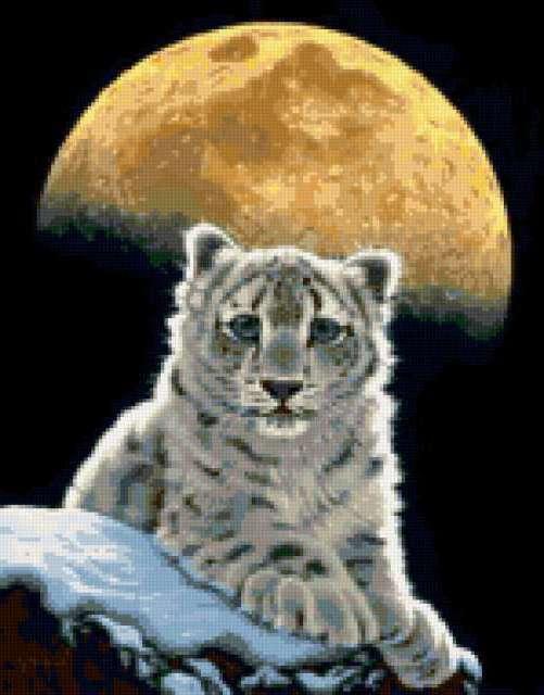 Белый тигрёнок, предпросмотр