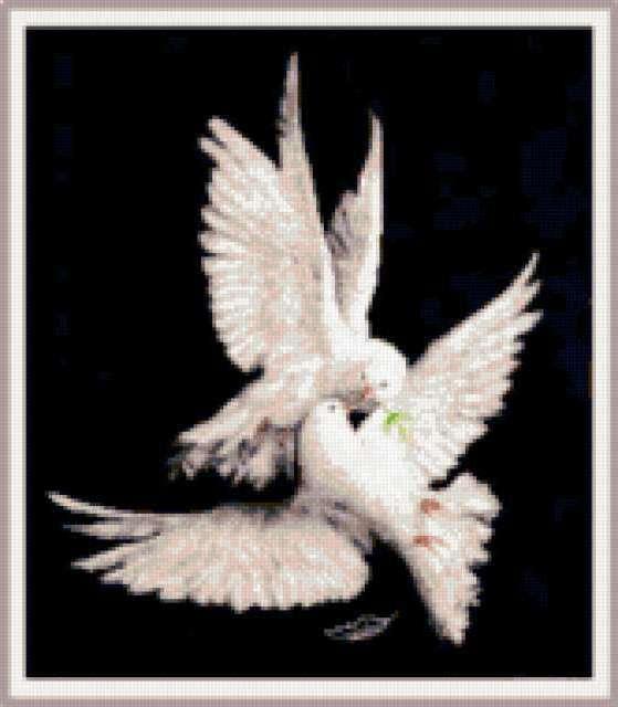 Моя голубка, предпросмотр