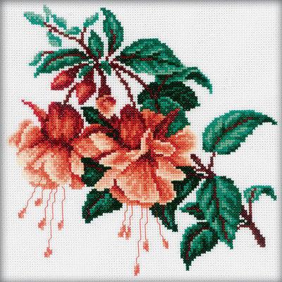 Ветка фуксии, цветы, фуксия,