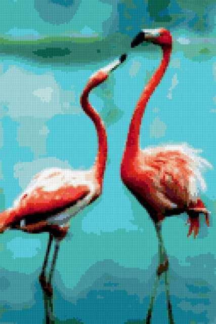 Пара розовых фламинго