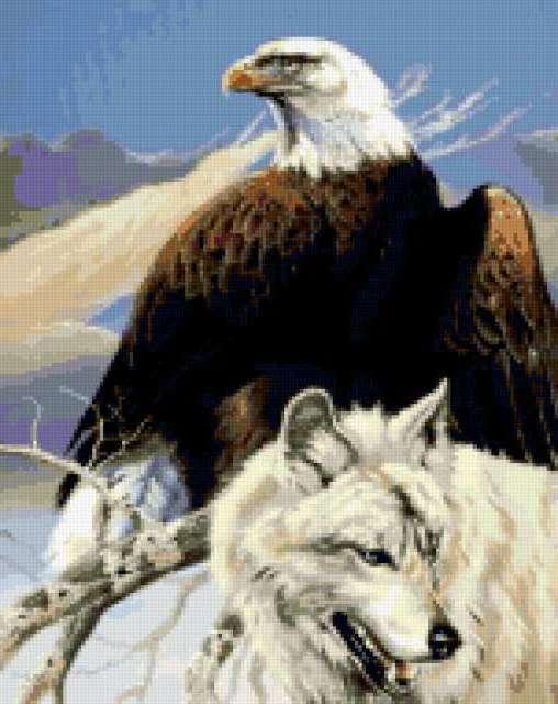 Орёл и белый волк,