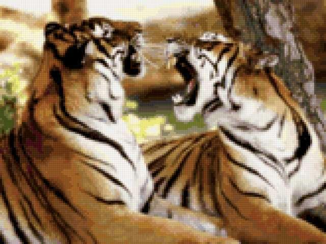 Предпросмотр. бенгальский тигр