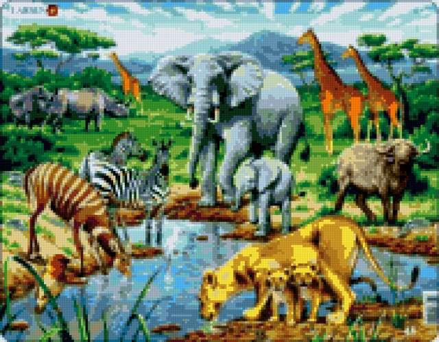 Саванна,звери, звери, водопой,