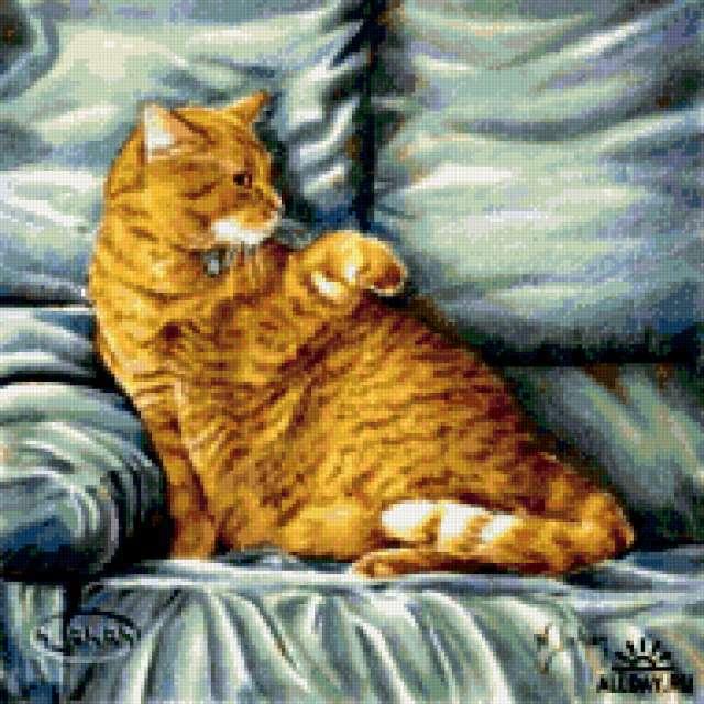 Кошка на диване, кошки,
