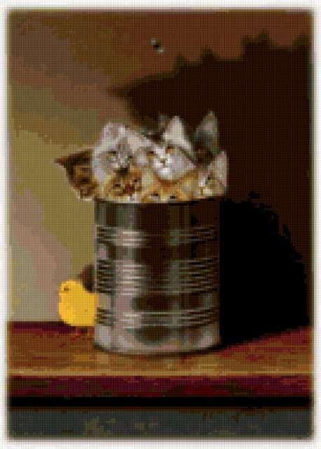 Котята в банке, банка, котята,
