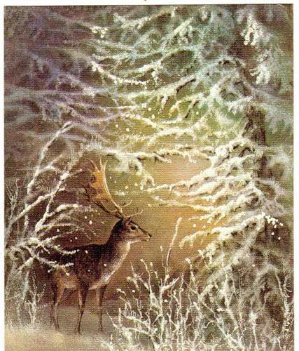 Олень в зимнем лесу, открытка,