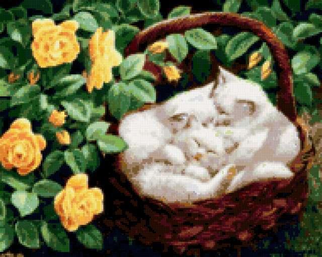 Белые котята,желтые розы,