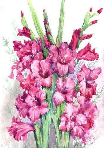 Гладиолусы, гладиолусы, цветы