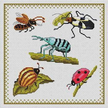 Жучки, жуки, насекомые, жучки,