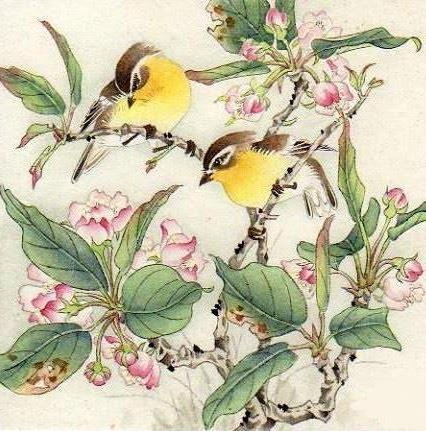Цветы и птицы, цветочное,