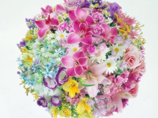 Цветочный круг, цветы