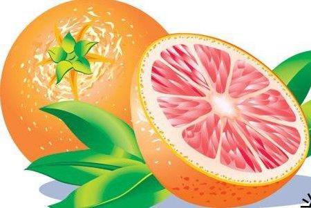 Схемы вышивка крестом апельсины лимоны киви яблоки груши