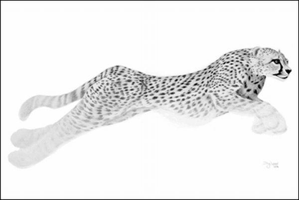 Схема вышивки «Бегущий гепард»