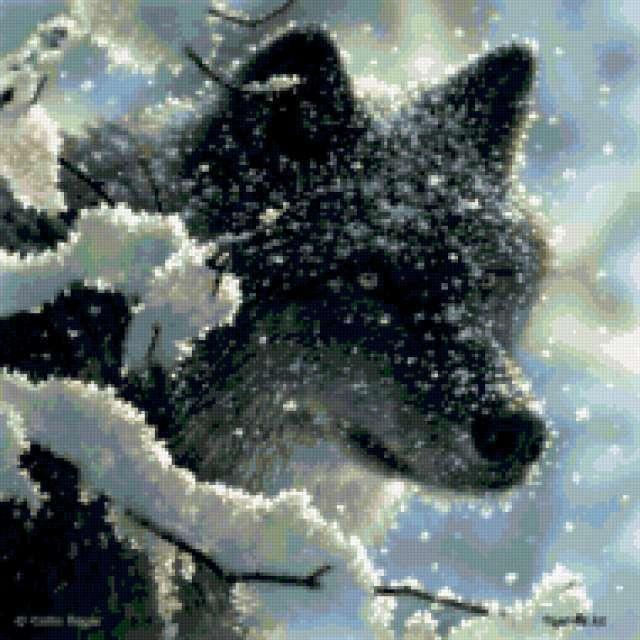 Волк в снегу, предпросмотр