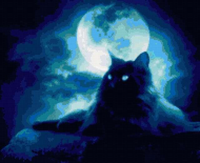 Серия - кошки и ночь,