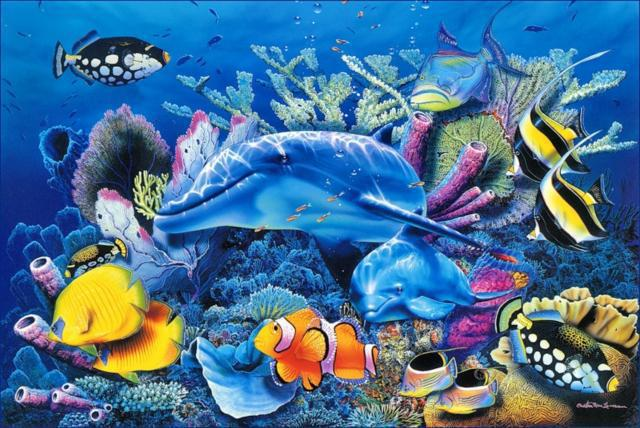 Морские обитатели, море