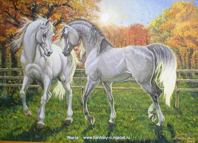 Прогулки белых лошадей