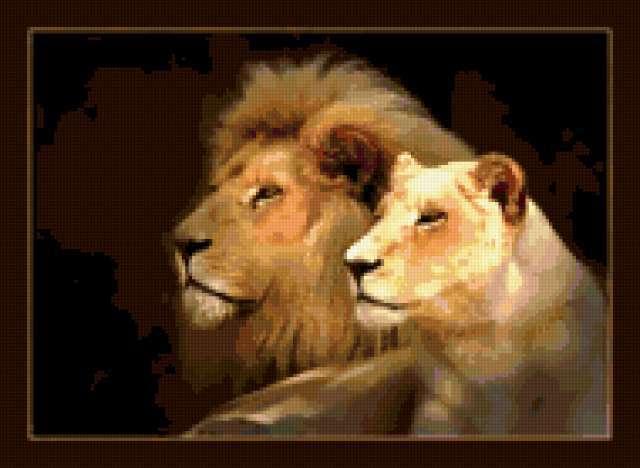 Лев с львицей, предпросмотр