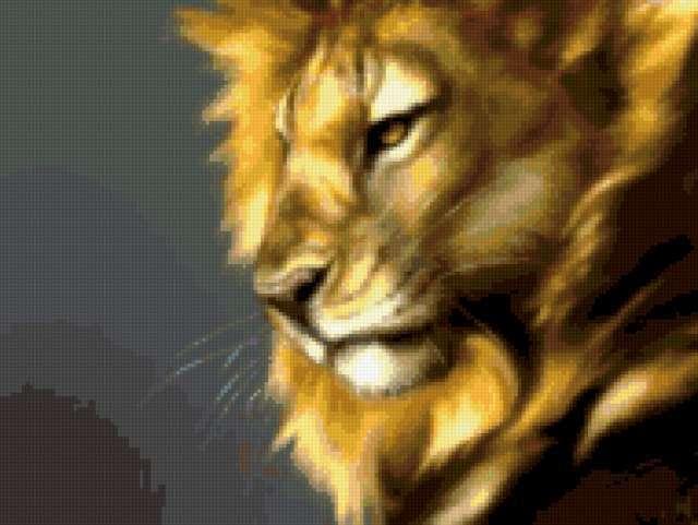 Лев, львы, дикие кошки,