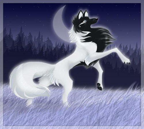 волки картинки мультяшные
