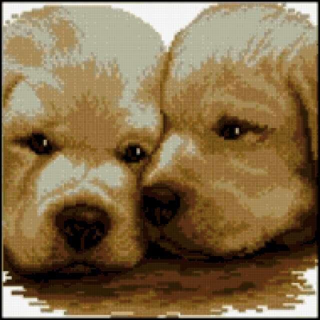 Вышивка крестом схемы собачки