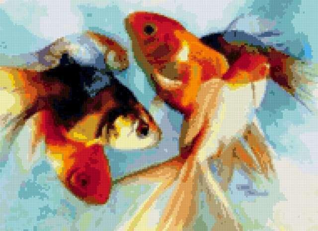 Золотая рыбка, предпросмотр