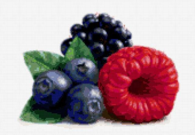 Лесные ягоды, предпросмотр