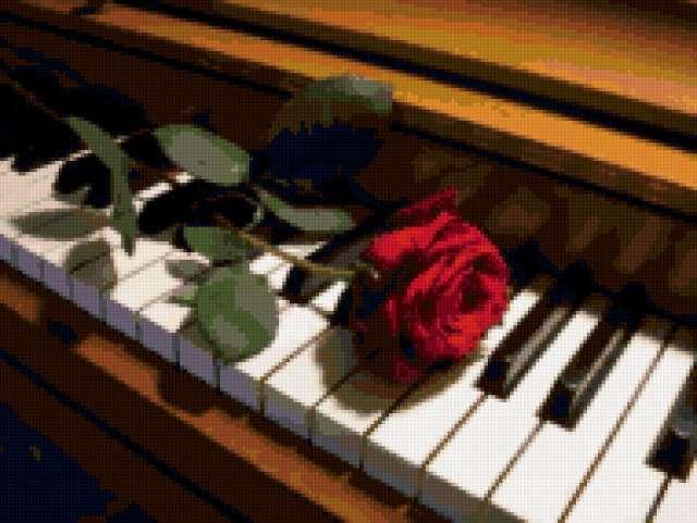 Роза на пианино, предпросмотр