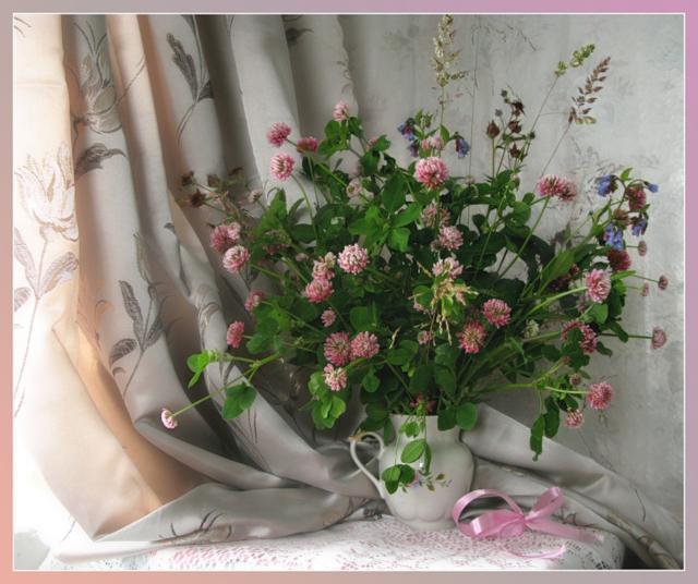 Букет клевера, цветы, букет,