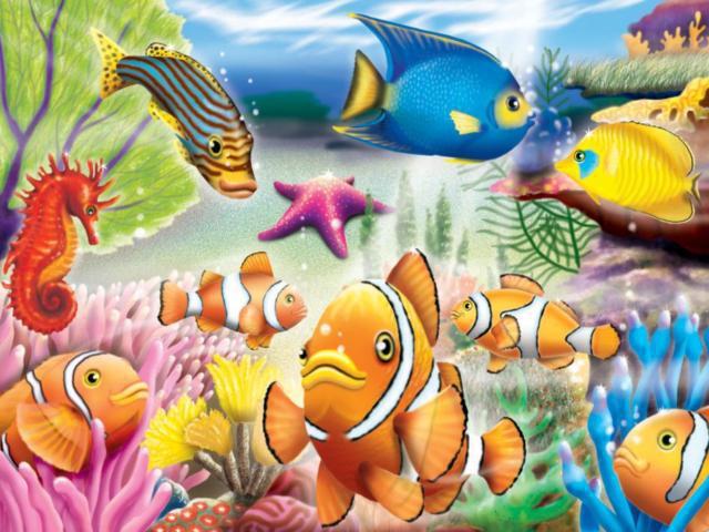 Морской мир, морское дно,