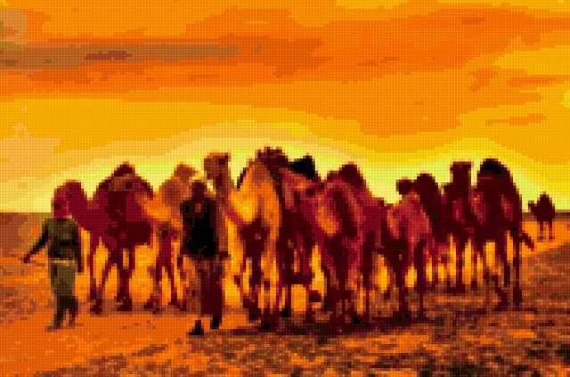 Desert Sunset, предпросмотр