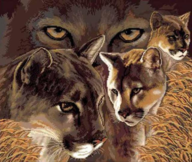 Дикие кошки..., животные
