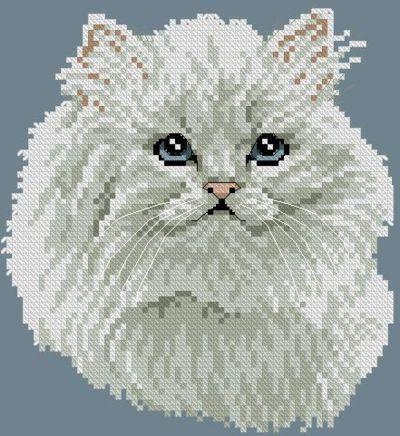Белый кот, кот. кошка.живтные
