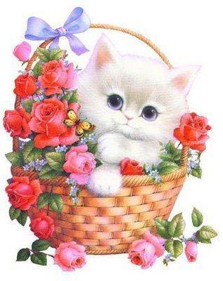Котенок в корзинке, котенок,