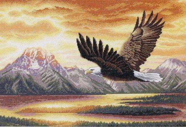 Парящий орел, оригинал