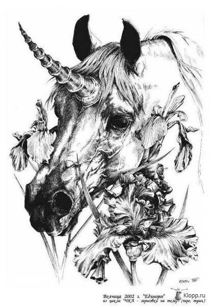 Единорог и ирисы, единорог,