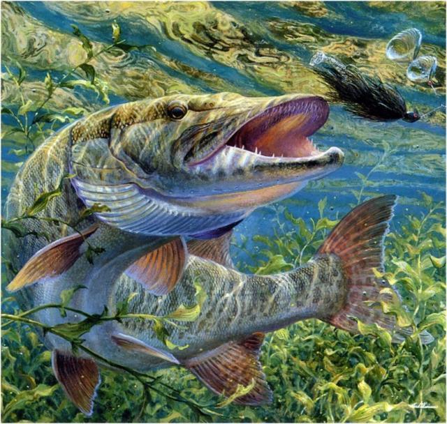 Щука, рыбы, подушка, картина,
