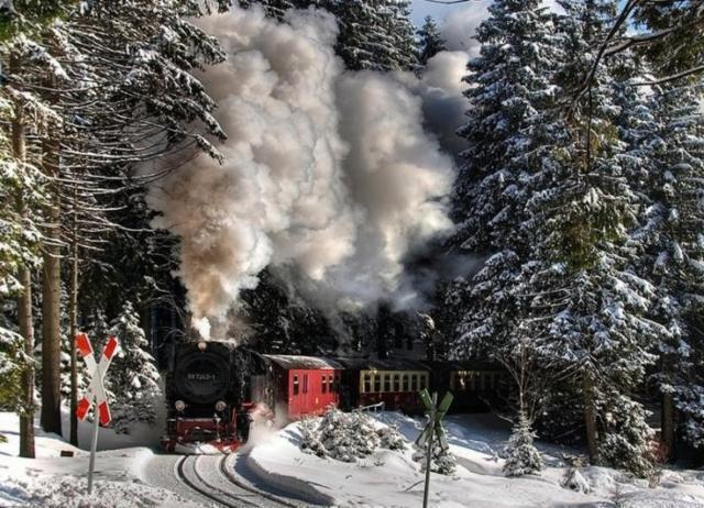 Поезд в лесу, зима,