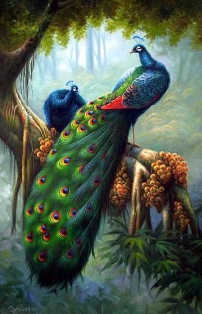 Райские птицы схемы вышивки