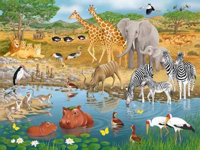 The Animals of Africa, africa, animals, giraffe, elephant, zebra, hippo, birds, африка, жираф, for kids