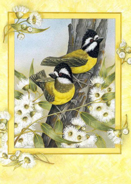 Синички, птицы, цветы, ромашки