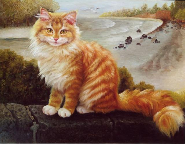 Рыжий кот, кошки, животные,