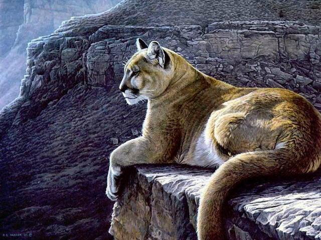 Картины природы-7, оригинал