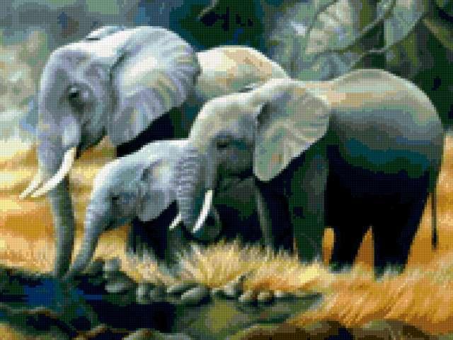Картины природы, предпросмотр