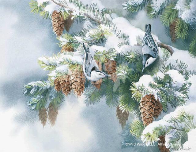 Пташки зимой, картина, райские