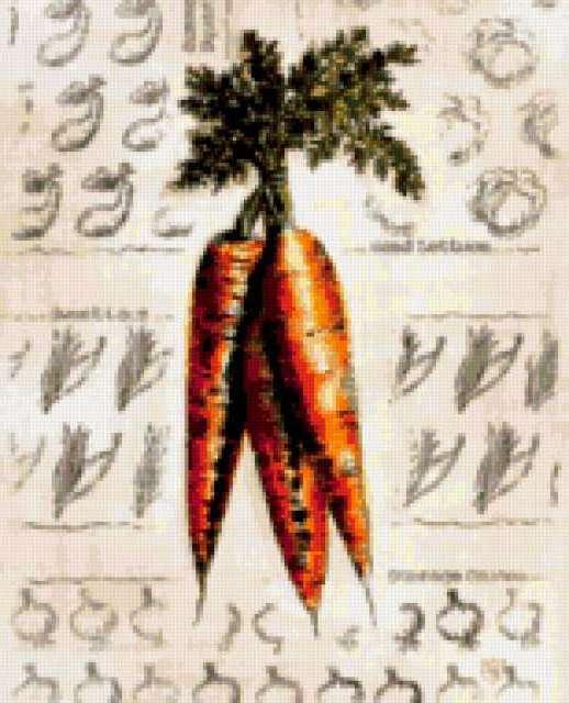 Морковь., предпросмотр