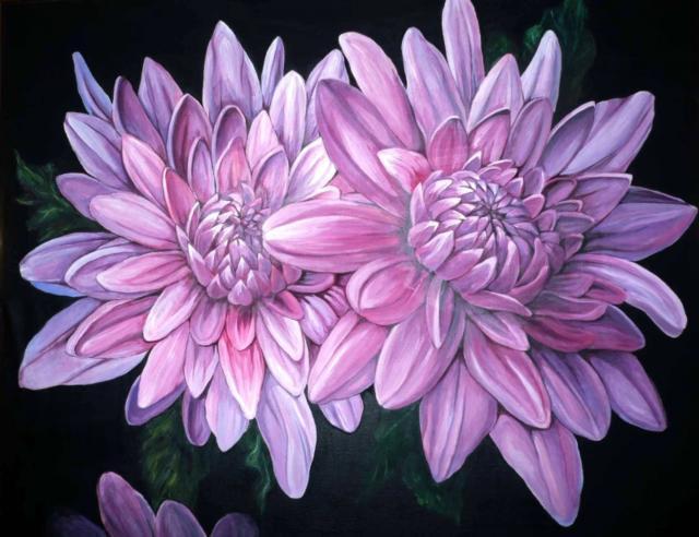 Хризантемы, цветы